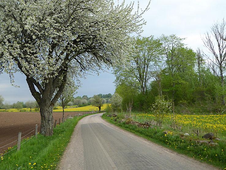 Cykla i Västergötland. Valle härad