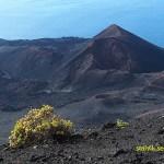 Vulkanen Teneguia. Fuencaliente