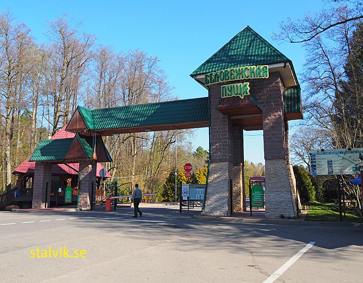 Belovezhskaya Pushcha National Park (U)