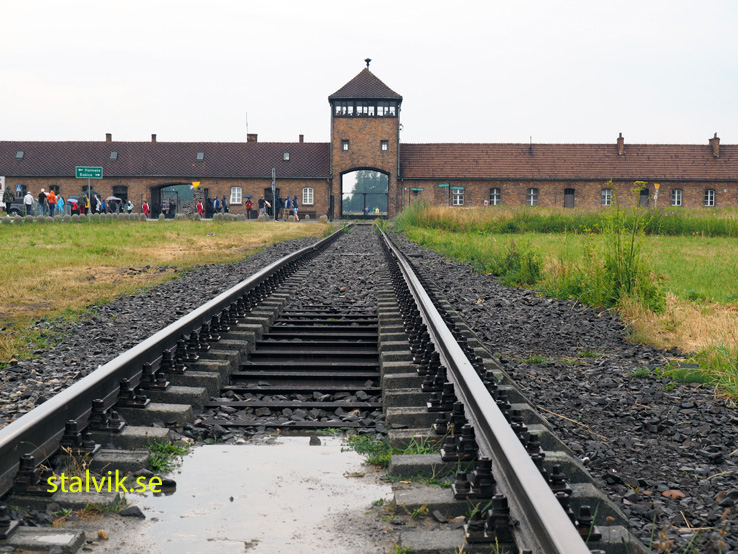 Koncentrationslägret Birkenau. Polen (U)