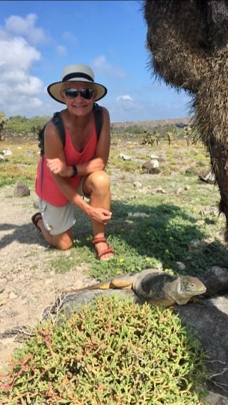 Land iguana och Eva