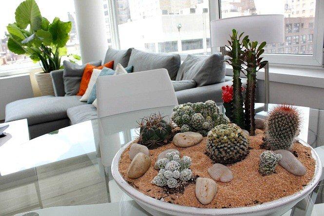 2_Ukrasite biljkama moderni enterijer
