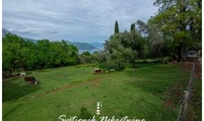 Plac povrsine 930m2 – Zvinje, Herceg Novi