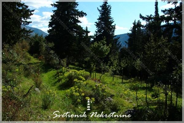 Gradjevinsko zemljiste Kotor - Gradjevinsko zemljiste sa panoramskim pogledom na more, Dobrota