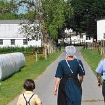 Bird in Hand Pennsylvania Amish Experience Visit-In-Person Tour 61054P1