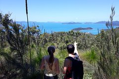 Whitsunday Wayfarer | Guided Bushwalking Tour