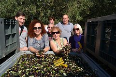 7-Day Abruzzo Cookery Tour: Cooking Classes Wine Tasting and Olive harvest