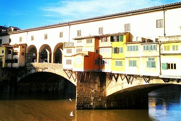 Florence Private Day-Trip Including Michelangelo's David or the Uffizi Gallery