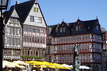 Best of Frankfurt with a licensed guide