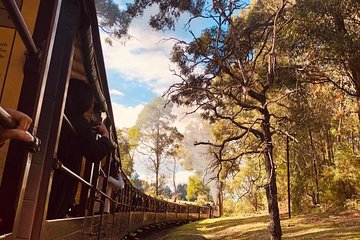 Private Yarra Valley And Puffing Billy Tour