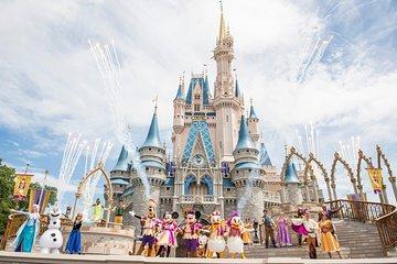 Semi Private Day Trip to Orlando Walt Disney from Miami