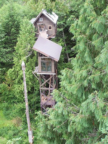 Worlds Most Extreme Tree Houses TechEBlog