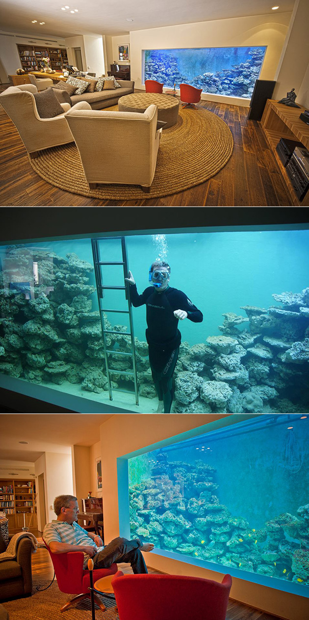 Man Builds Largest Home Reef Aquarium Can Hold 30000