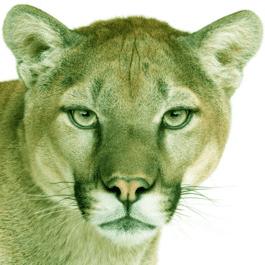 Mac Mountain Lion