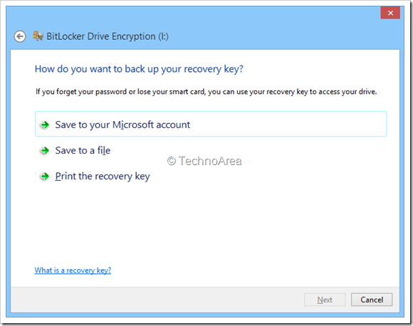 BitLocker_Encryption_Option-1