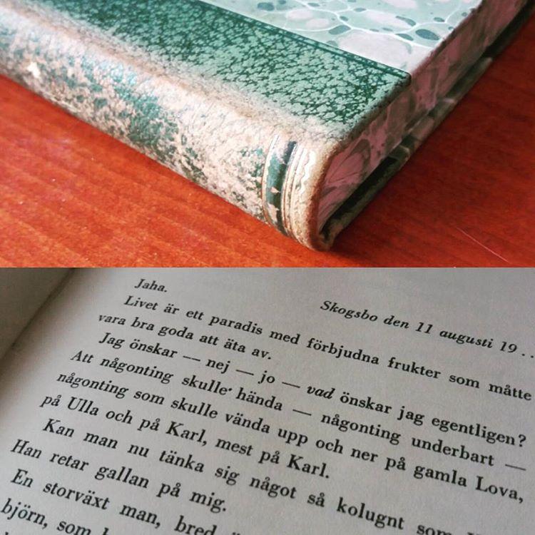 """Har du alltid undrat över inledningsmeningen i Agnes von Krusenstjernas debutroman? """"Jaha. Livet är ett paradis med förbjudna frukter som måtte vara bra goda att äta av."""" #klassiker #bokhyllehittat"""