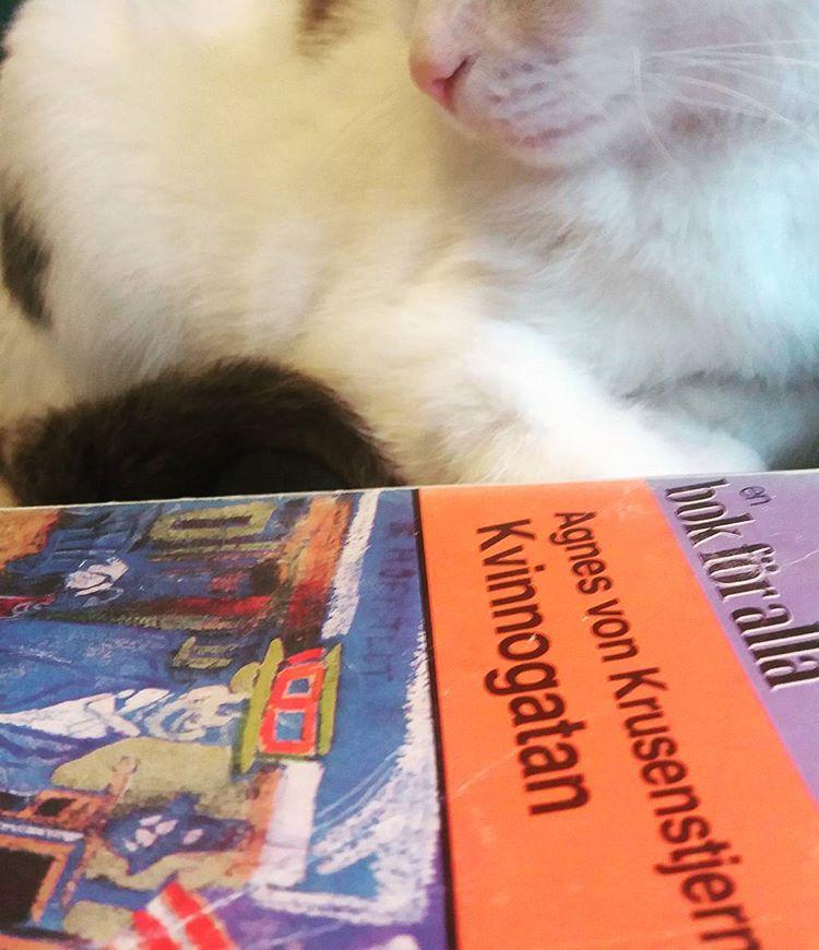 Agnes von Krusenstjernas romansvit om Fröknarna von Pahlen är mycket mer än vad jag väntat mig, på alla sätt och vis. Men omslaget känns inte helt... rätt? #bokomslag #klassiker #hbtqböcker