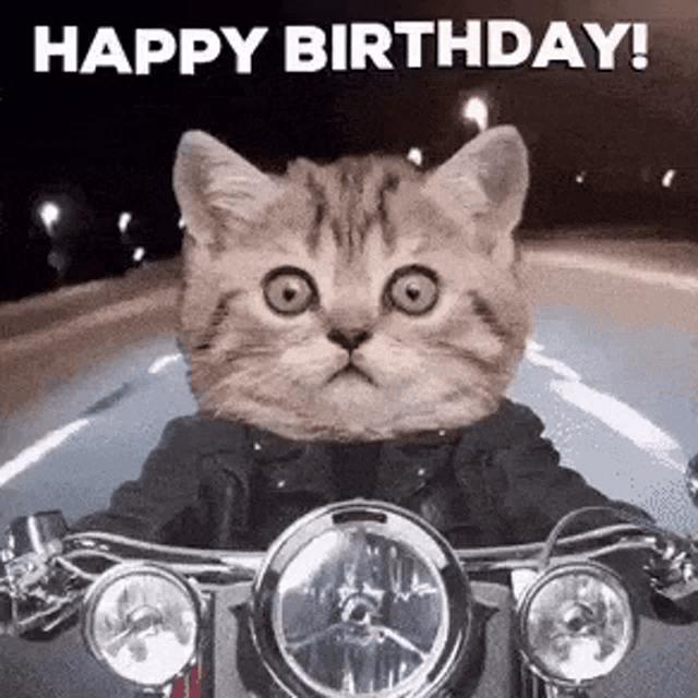 Happy Birthday Motorcycle Gifs Tenor
