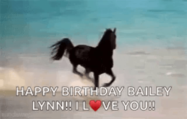 Happy Birthday Horse Gif Gifs Tenor