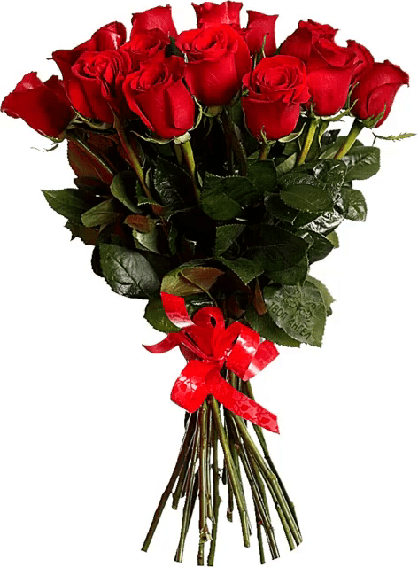 Roses GIFs   Tenor Red Roses GIF   Red Roses Bouquet GIFs