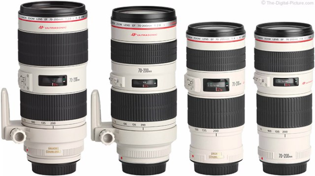 Which Canon EF 70-200mm L Lens Should I Get?
