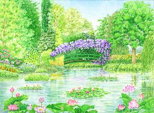 「睡蓮の池」