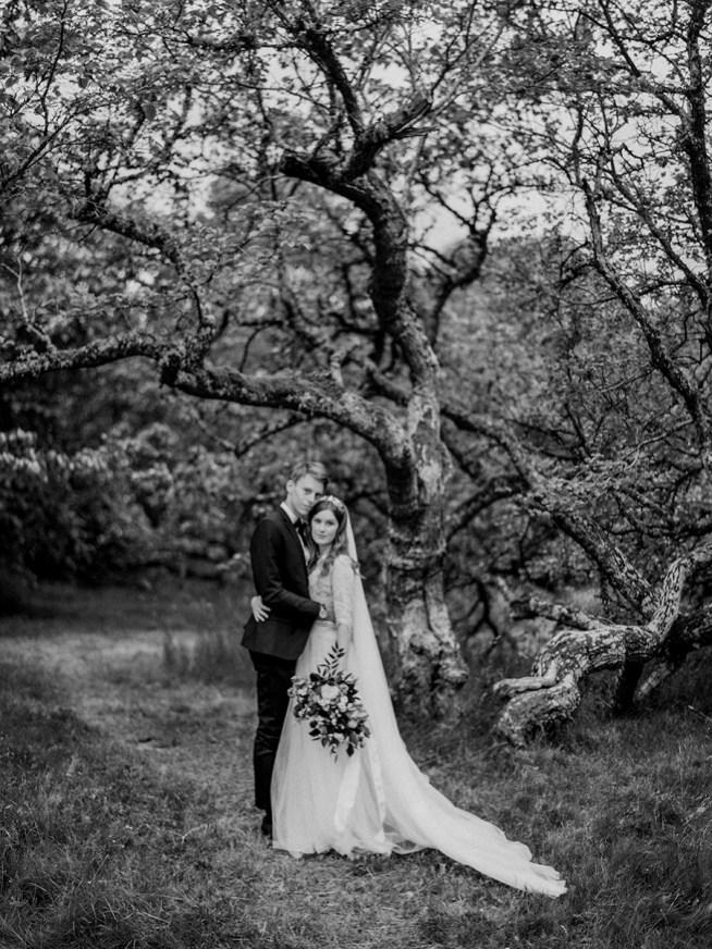 Brudparet i döda skogen av silkesträd på Visingsö