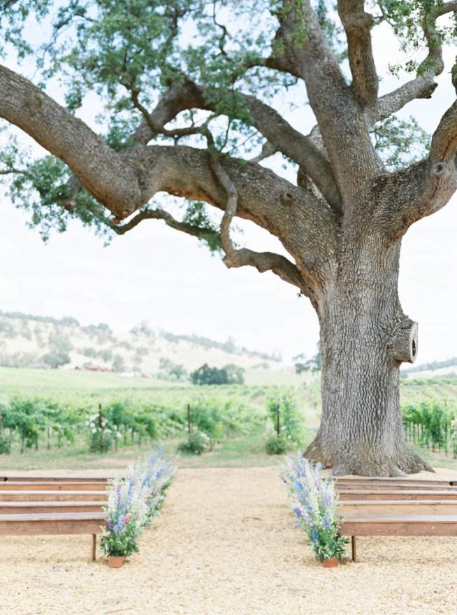 utomhusvigsel vid ett träd