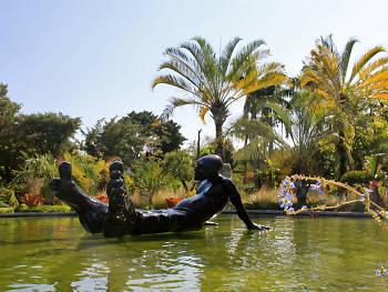 Go green at Miami Beach Botanical Garden