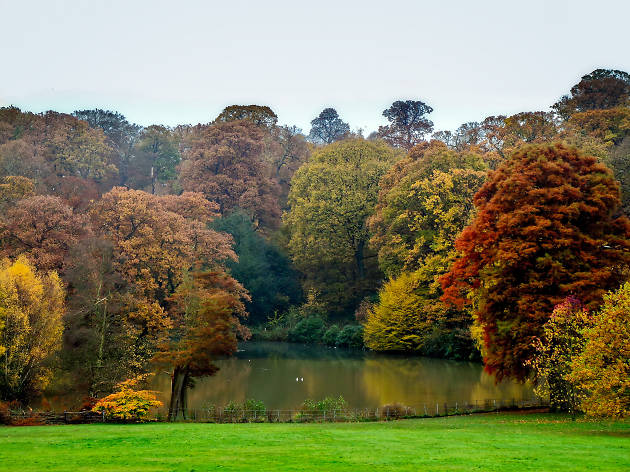 Hampstead Heath, Autumn