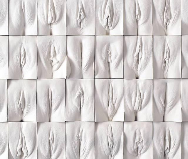Jamie Mccartney Great Wall Of Vagina