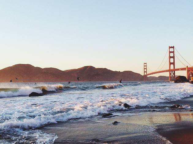 15 Best Beaches In California For Sunbathing Surfing And Swimming