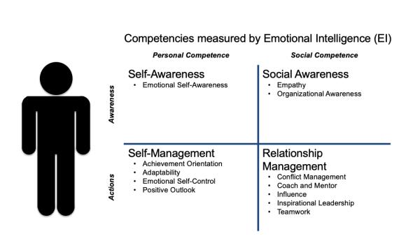 ESCI, Emotional Intelligence, Hay Group, matrix, Toby Elwin, blog