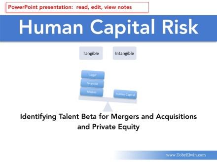 Human Capital, Risk Management, presentation, Toby Elwin