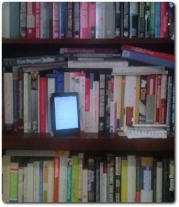 Toby Elwin, kindle, book, bookshelf, ereader, Amazon, book reading list