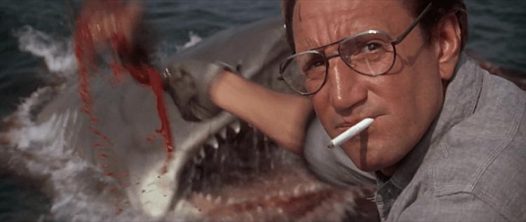 leadership, fishing, Jaws, leaders, Toby Elwin, blog