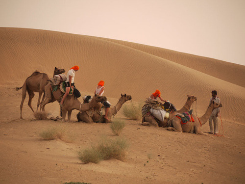 Jaisalmeer, Rajasthan