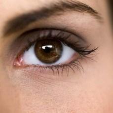 Image result for human eye