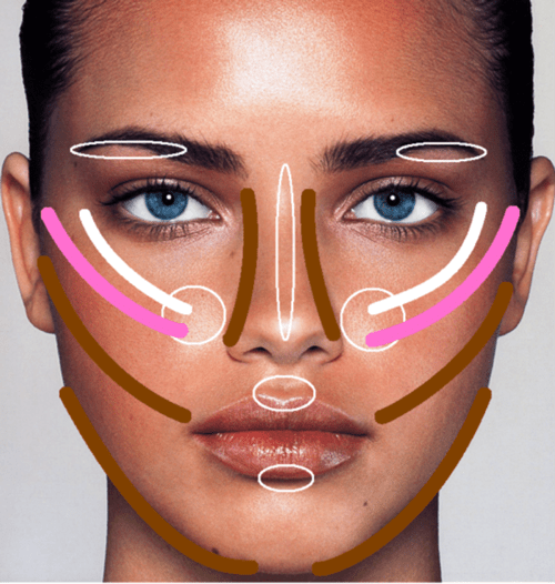 contouring face chart blush