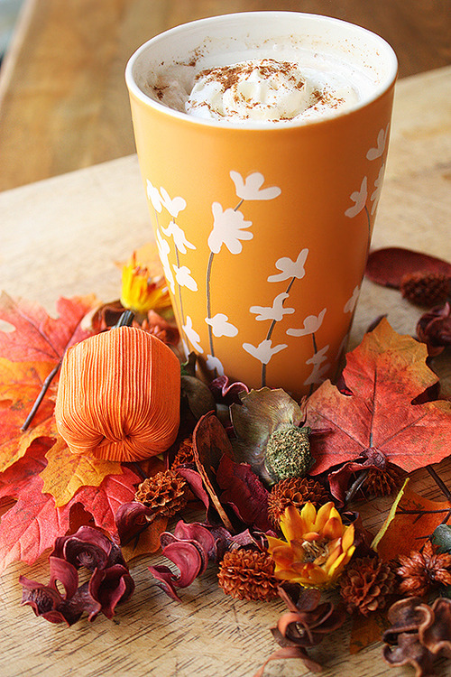 Fall Drinks are a perfect way to warm up on chilly mornings! Try this Pumpkin Spice Chai Latte!!