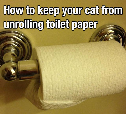 How to keep your cat from unrolling toilet paper - picture of the toilet roll on a horizontal holder, with the end folded to the side and tucked snugly into the central void of the toilet's paper core.