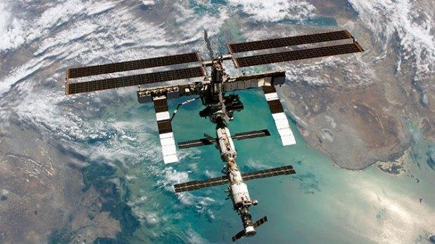 На поверхности МКС поселились внеземные организмы