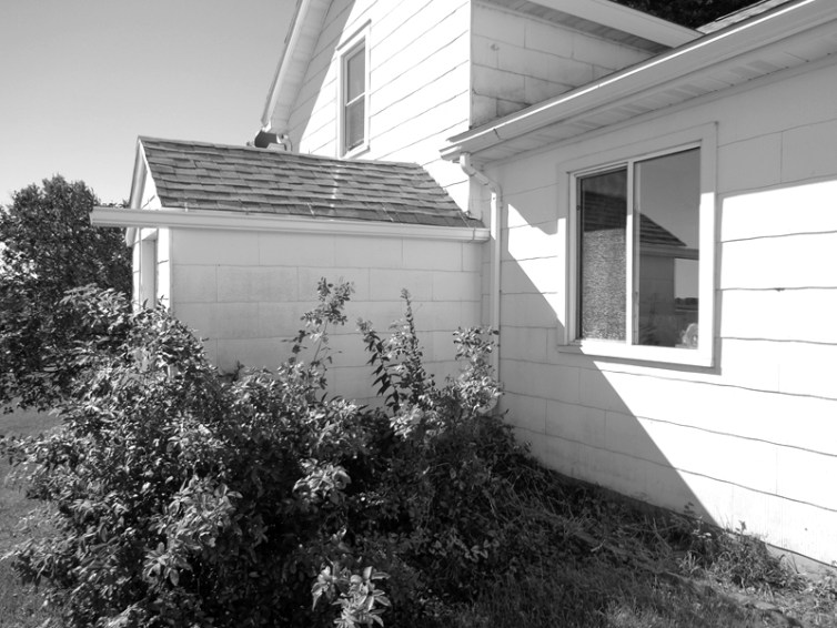 Landscape renovation before photo