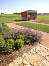Perennial texture adjacent to flagstone walk