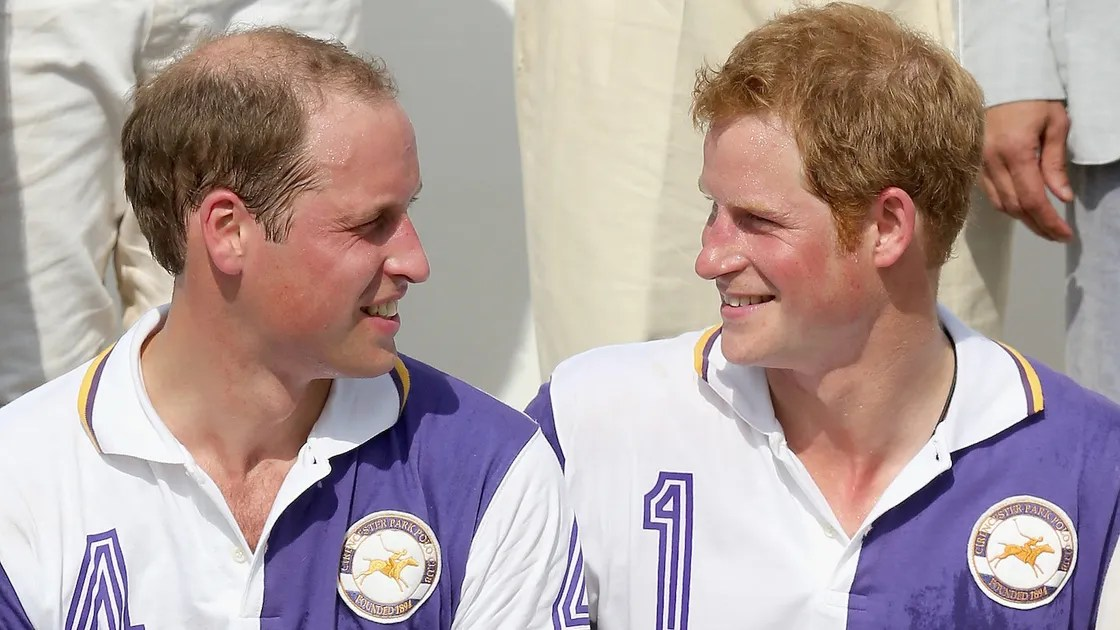 Prince Harry Says That He Is The Cooler Brother Vanity