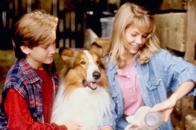 <em>Lassie,</em> 1994