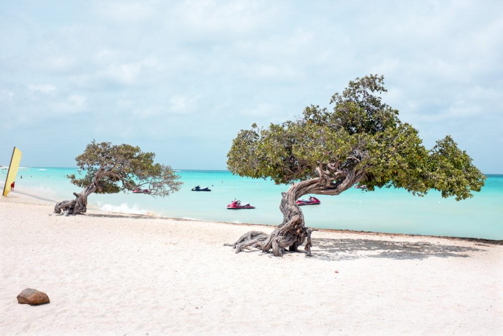 bästa stränderna i världen, bästa stränderna i Karibien, bästa stränderna i Västindien, strand på Aruba, stränder i Karibien