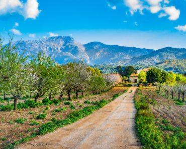spansk ö, Balearerna, baleariska öar, resor till Spanien, resor till Mallorca