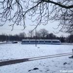 amsterdam – transporte1