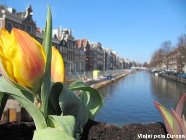 Primavera + Amsterdam = Combinação perfeita!